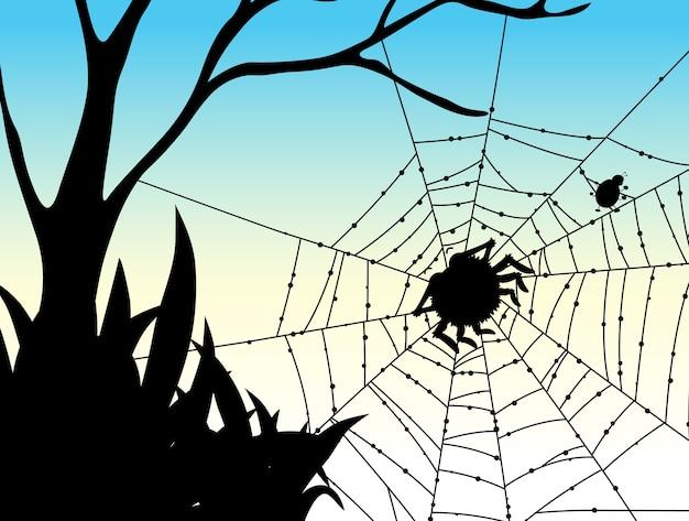Sombra de fondo de naturaleza de tela de araña