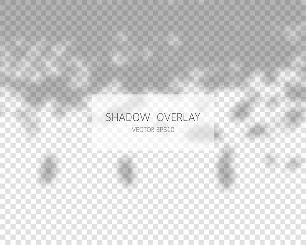 Sombras naturales aisladas sobre fondo transparente