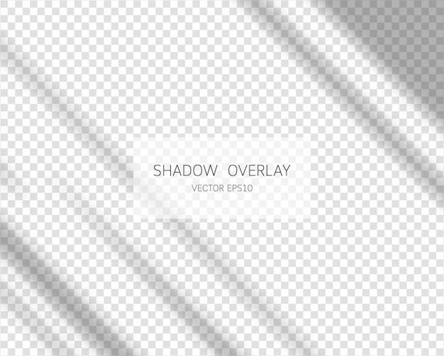 Sombras naturales de la ventana aislada sobre fondo transparente