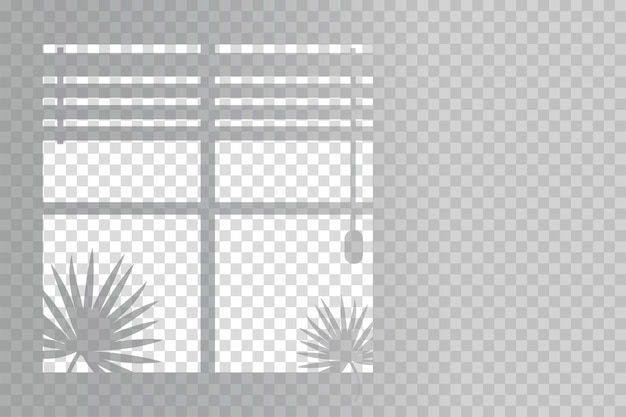 Sombras orgánicas y persianas para efectos de luz natural.