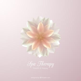Spa terapia