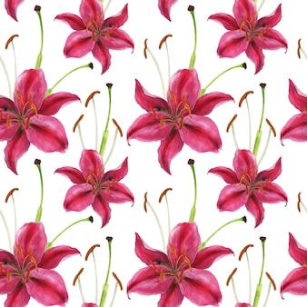 Stargazer lirio acuarela rosa de patrones sin fisuras