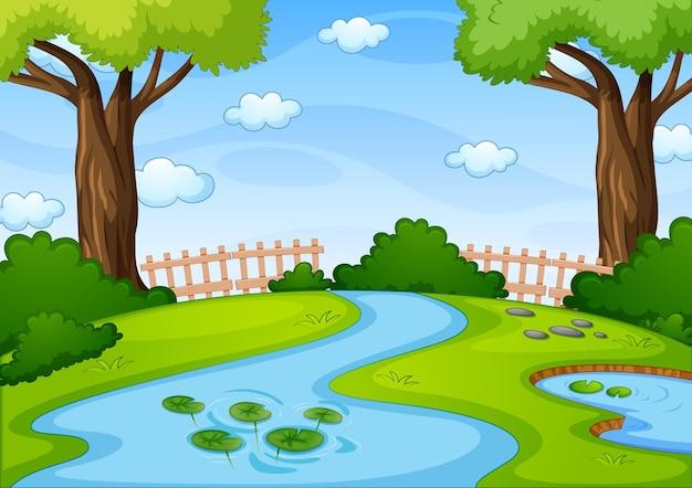 Stream en la escena del parque natural.