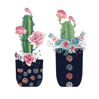 Suculentas cactus dibujado a mano aislado en blanco