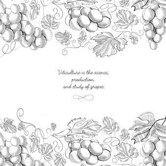 Superior e inferior horizontal elegante adorno de desplazamiento grabado frontera racimos de uva