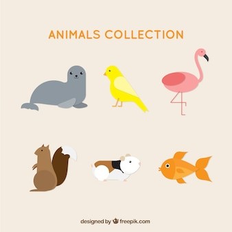 Surtido de animales planos lindos