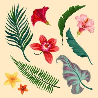 Surtido de flores y hojas tropicales.