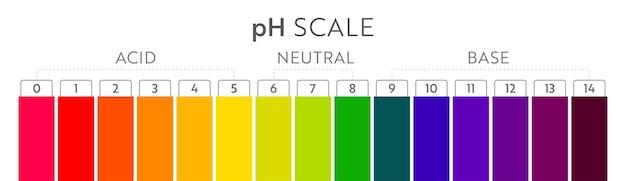 Tabla de escala de valores de ph. infografía de equilibrio ácido-base. cartel de educación