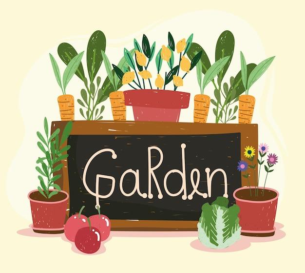 Tablero de jardín y plantas