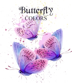 Tarjeta de acuarela de mariposa