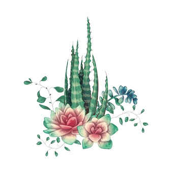 Tarjeta con conjunto de cactus y suculentas.