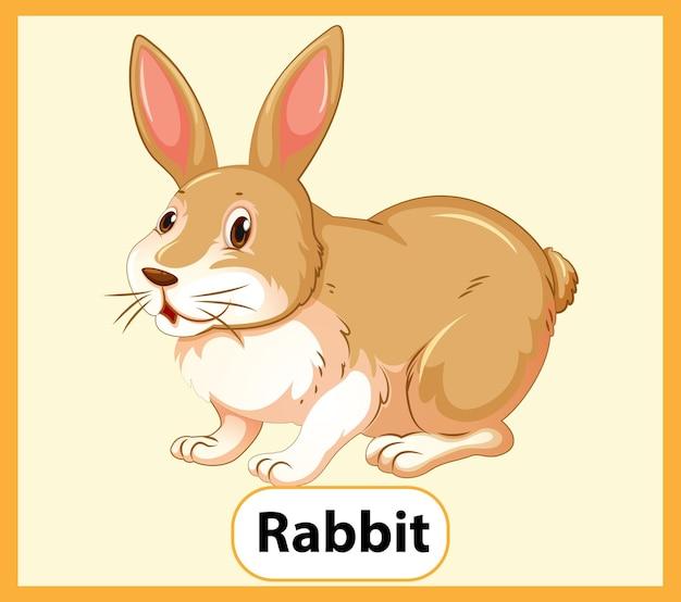 Tarjeta educativa de palabras en inglés de conejo