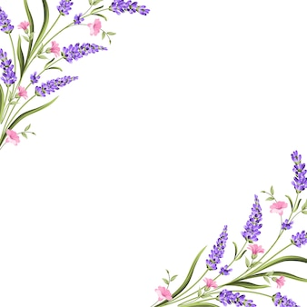 Tarjeta elegante con flores de lavanda.