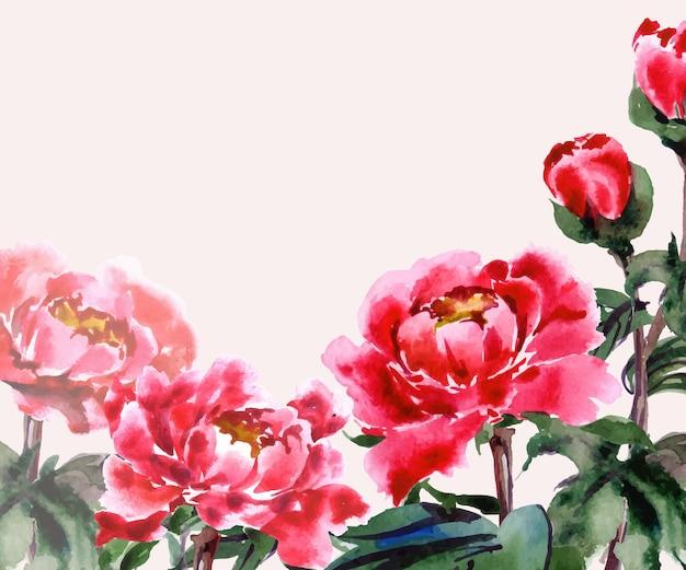 Tarjeta de felicitación con acuarela peonías florecientes ilustración vectorial