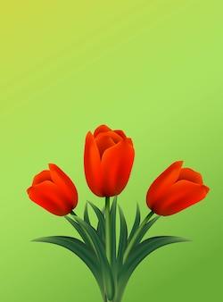 Tarjeta de felicitación con flores de tulipanes sobre fondo verde