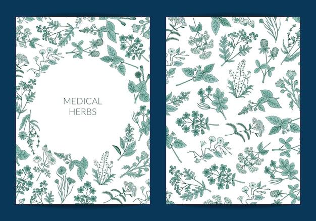 Tarjeta de hierbas medicinales dibujadas a mano o plantilla de volante