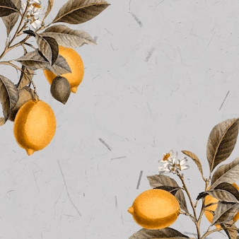 Tarjeta de limonero en blanco
