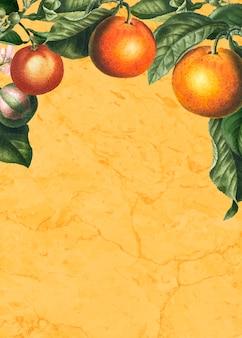 Tarjeta de naranjas