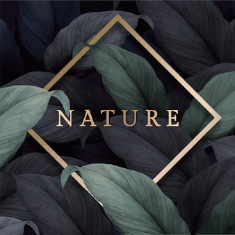 Tarjeta de la naturaleza