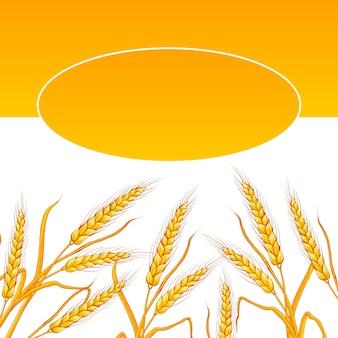 Tarjeta de oreja de trigo.