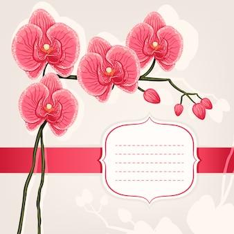 Tarjeta con orquídeas rosas