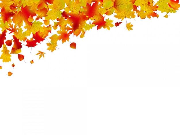 Tarjeta de otoño de hojas de colores.