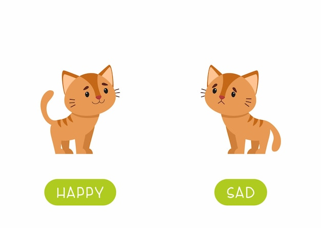 Tarjeta de palabras de antónimos educativos con gatos