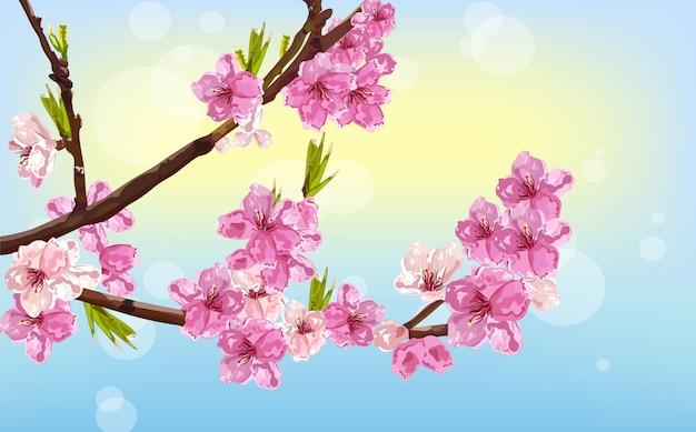 Tarjeta de primavera de flores de cerezo