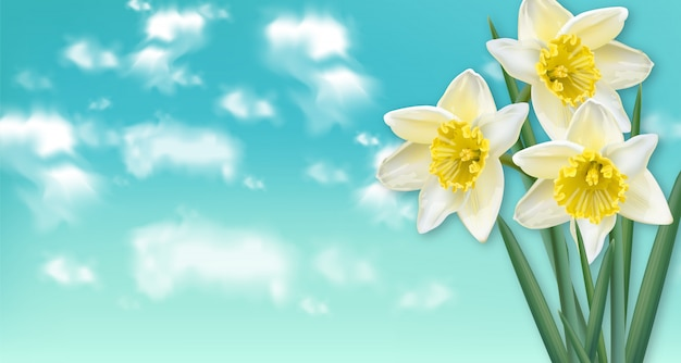 Tarjeta de primavera ramo de flores de narciso.