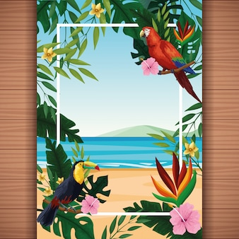 Tarjeta de verano en blanco con marco