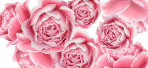 Tarjeta de verano con flores rosas.