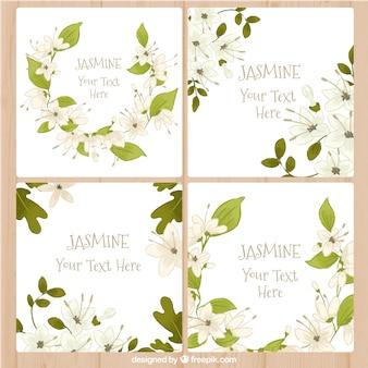 Tarjetas de felicitación de jazmín