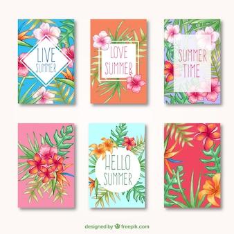 Tarjetas de verano tropicales, dibujadas a mano