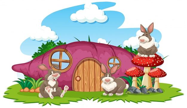 Taro house con tres conejos estilo de dibujos animados sobre fondo blanco.