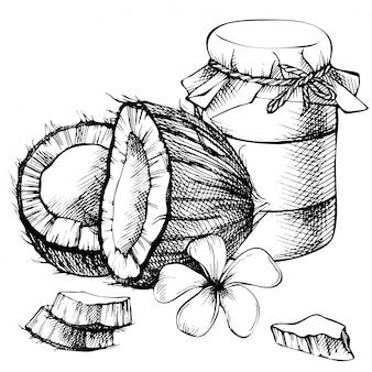 Tarro de aceite de coco, leche. boceto dibujado a mano. boceto de ilustración tropical. estilo vintage