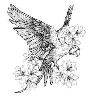 Tatuaje arte pájaro dibujo a mano y boceto en blanco y negro sobre fondo blanco.