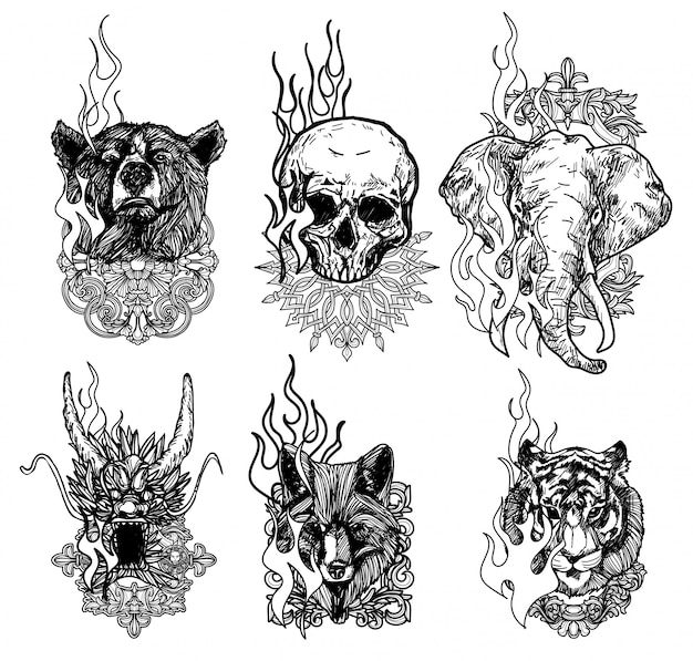 Tatuaje arte tigre dragón lobo elefante cráneo dibujo y boceto blanco y negro aislado