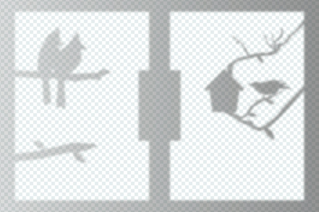 Tema de efecto de superposición de sombras transparentes monocromas