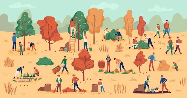 Temporada de cosecha. agricultores en plantaciones recolectando frutas, verduras y bayas. apilamiento de heno, fondo de vector de trabajo agrícola de otoño. recolectando manzana, pera y papa, calabaza