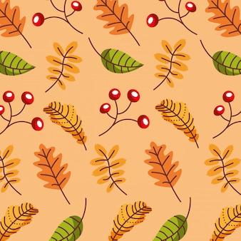 Temporada de otoño patrón de hojas y frutos