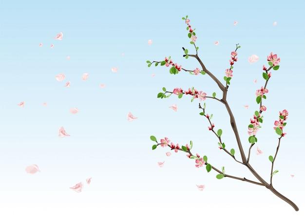 Temporada de primavera. rama floreciente con hojas nuevas