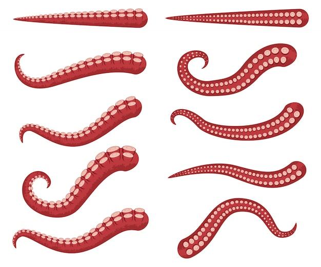 Tentáculos de pulpo vector conjunto de dibujos animados aislado