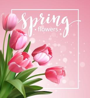 Texto de primavera con flor de tulipán.