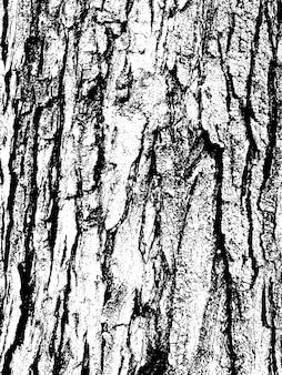 Textura de corteza de árbol de grunge