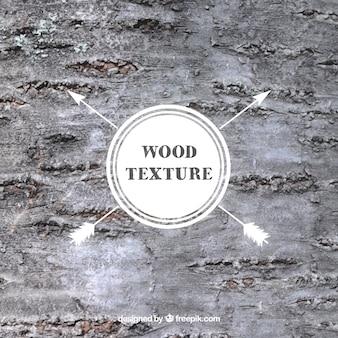 Textura de corteza de madera