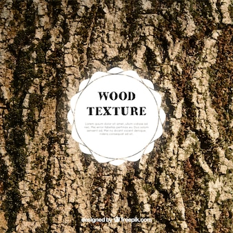 Textura oscura de tronco de madera
