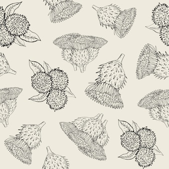 Textura transparente de bardana con brotes dibujados a mano. patrón de ilustración de esquema.