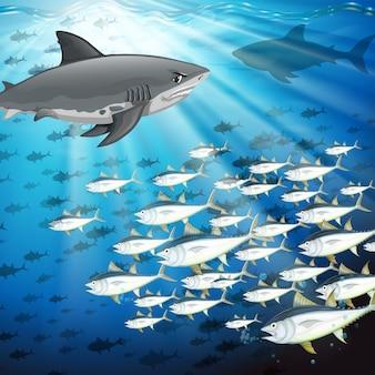 Tiburones y peces bajo el mar.