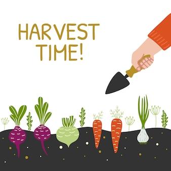 Tiempo de cosecha banner con verduras.