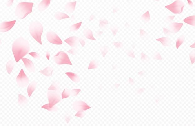 Tiempo de primavera hermoso fondo con flores de cerezo en flor de primavera. pétalos voladores de sakura aislados sobre fondo blanco. ilustración de vector eps10